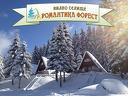 Цяла зима край язовир Широка поляна! Нощувка със закуска за до 6 човека във вила + СПА