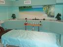 Пакет от 3 антицелулитни масажа за 26,70лв или 8 бр. за 80лв - пролетна цена само сега!
