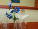Почивка за двама в морската столица на супер цена от 44,99 лв със закуски в хотел