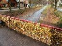 Уикенд във Върнячка баня, Сърбия! Нощувка със закуска, топъл минерален басейн + транспорт за 89лв, Бамби М Тур