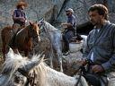 Конна езда с треньор за малки и големи - 30 или 60 минути от 7,90лв в база