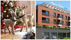 Весела Коледа във Велинград! Три или четири нощувки със закуски и вечери + Празнична вечеря с много изненади и СПА зона на цена от 216лв, от Хотел Аква Вива Спа