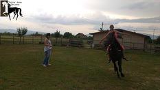 30-минутно обучение по конна езда с инструктор + 30 минути разходка с кон само за 22лв в конна база Ласкар, от VitoshaFUN. Открийте магията на общуването с коня