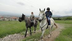 30 минути конна езда с водач или урок с инструктор на цена от 8лв, от Конна база София - Юг