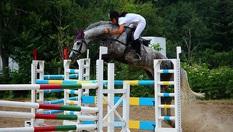 Индивидуално обучение по конна езда за начинаещи! 30 минути на открит или закрит манеж само за 15лв, от VitoshaFUN