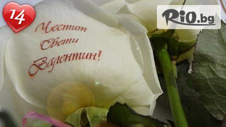 Онлайн магазин koshnica.bg - thumb 2