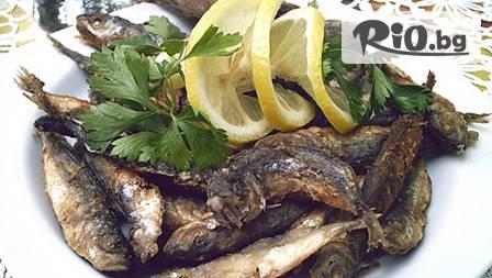Пресен сафрид със студена биричка на половин цена в Морската градина на Варна!