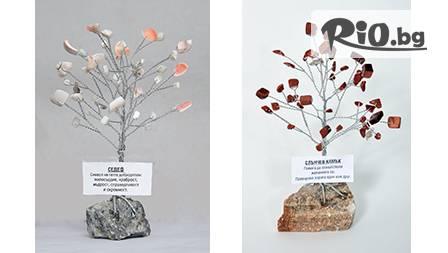 Фън Шуй дръвче от полускъпоценни камъни върху минерал за 11.90 лв. от Infozdrave.com