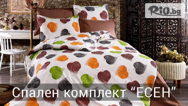 Шико-ТВ-98 ЕООД - thumb 9