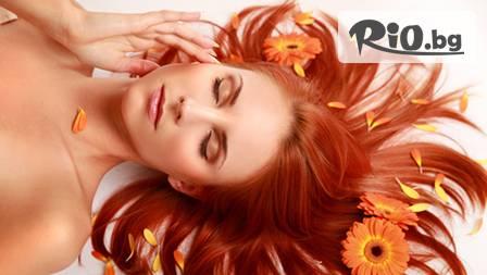 Възстановяване и грижа за косата. Специална терапия, издухване и оформяне без или с подстригване от 5лв