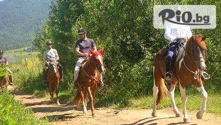 60 минутна езда или разходка сред природата с водач само за 12.50 лв от Конна база SiVEK гр. Велинград