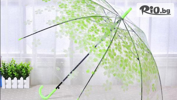 Прозрачен дамски чадър #1