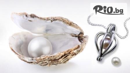 Мида с истинска перла в нея + стилно колие с 63% отстъпка за 7.39лв, Стилно бижу подарък от Тритон 2013