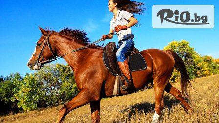 60-минутна конна езда с инструктор + Бонус стрелба с лък с 50% отстъпка само за 15лв, от Конна база София - Юг
