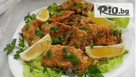 Вкусно на палубата! Шаран и картофки за обяд на ресторант-кораб ЕМОНА за 4,50 лв във водите на язовир