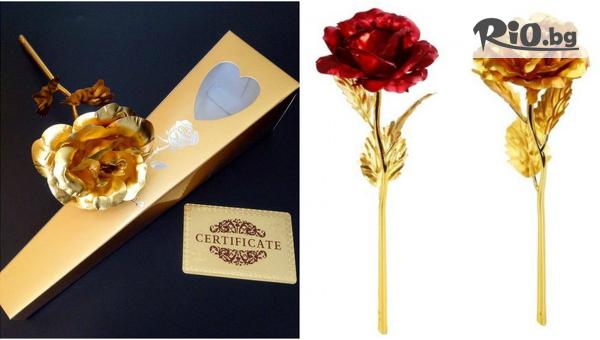 Оригинален подарък за всеки повод! Златна Роза с 24к покритие в изискана кутия и с безплатна доставка, от АВИ Трейдинг Груп