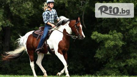 90-минутен конен поход с водач на Витоша, от Конна база София - Юг