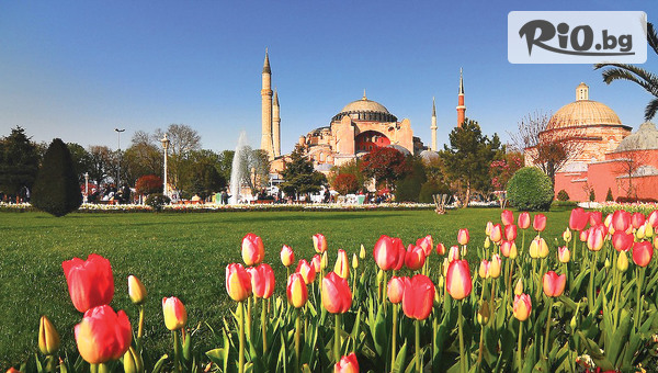 8 Март в Истанбул #1