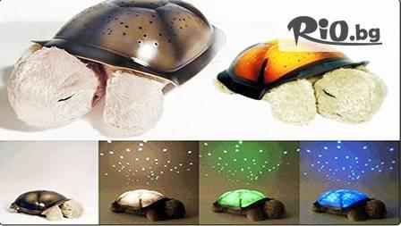 """Музикална играчка - ЛАМПА """"Костенурка"""" проектираща 7 вида съзвездия в 3 цвята на таванa и стените за 32.50 лв от www.kaya-originalnipodaraci.com"""