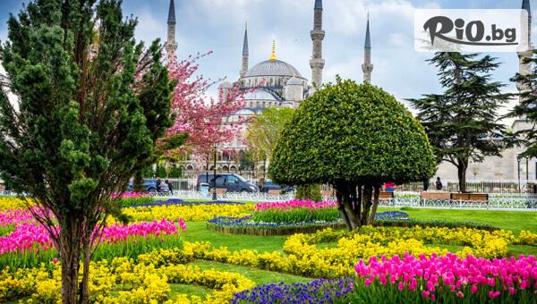 4-дневна екскурзия за Фестивала на Лалето в Инстанбул! 2 нощувки със закуски + Бонус + транспорт от Бургас и водач, от Лионс Травел
