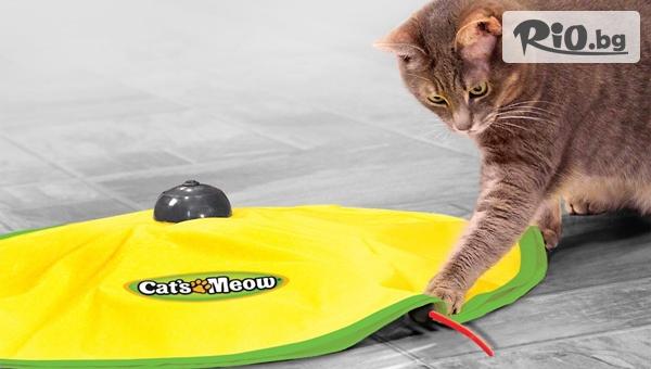 Забавна интерактивна игра за котка с 64% отстъпка, от Topgoods.bg