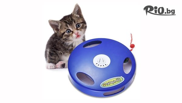 Интерактивна игра за котки с 69% отстъпка, от Topgoods.bg
