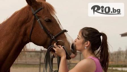 Половин час конна езда с треньор за 7,49 лв. край Пловдив! Спорт и отмора!