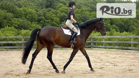 45-минутен урок по конна езда с инструктор, от Конна база София - Юг