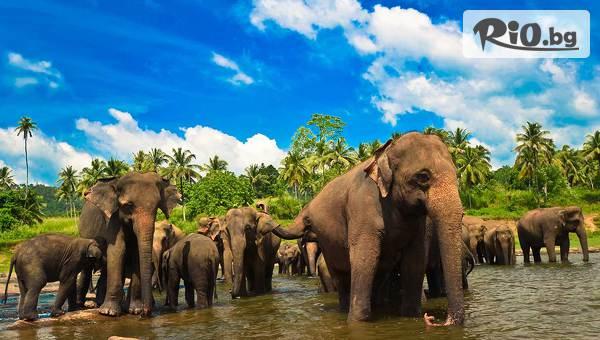 Eкскурзия до Шри Ланка #1