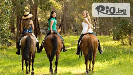 45-минутна разходка с кон на Витоша, от Конна база София - Юг