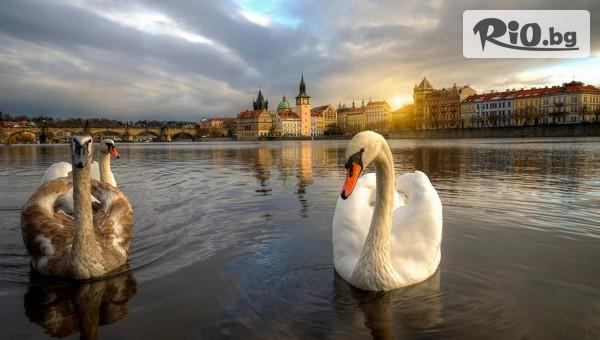 Прага, Братислава и Сегед #1