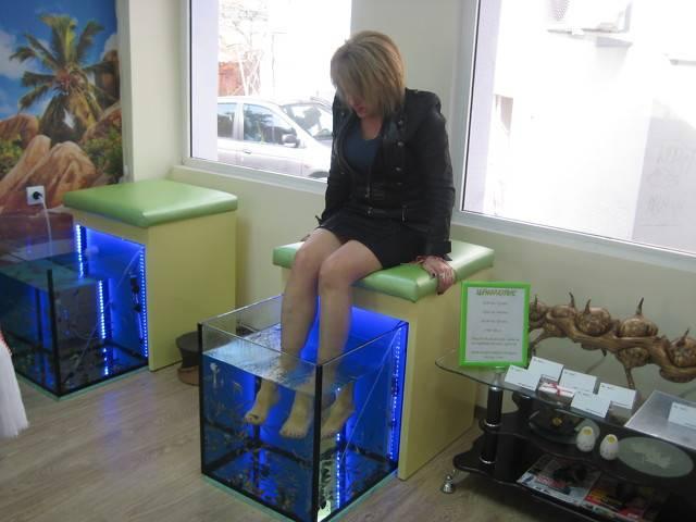 SPA Fish Галерия #8