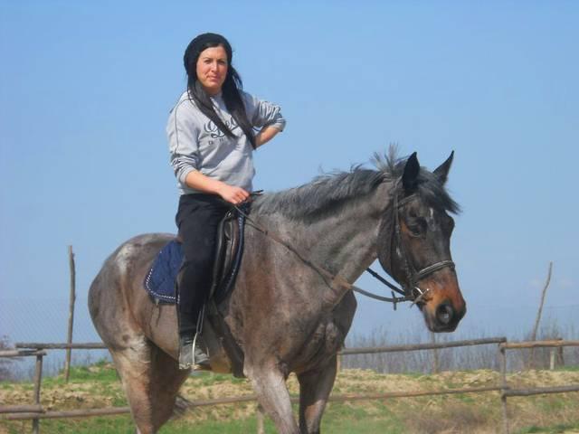 База за конна езда Галерия #5