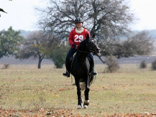База за конна езда Галерия #3