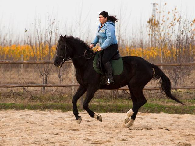 База за конна езда Галерия #4