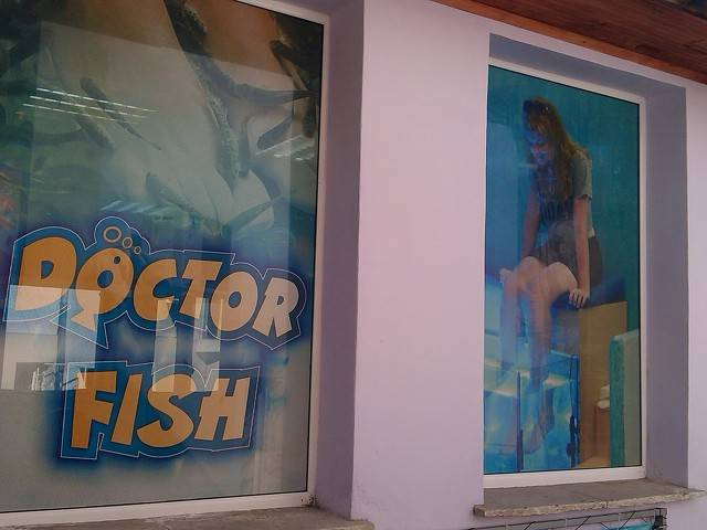 SPA Fish Галерия #1