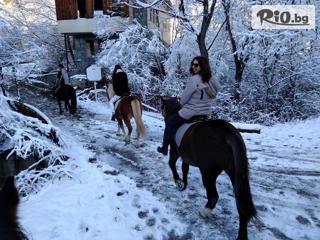 Конна езда Ризов Галерия #3