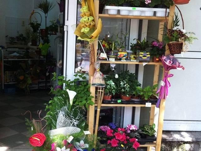магазин за цветя Галерия #3