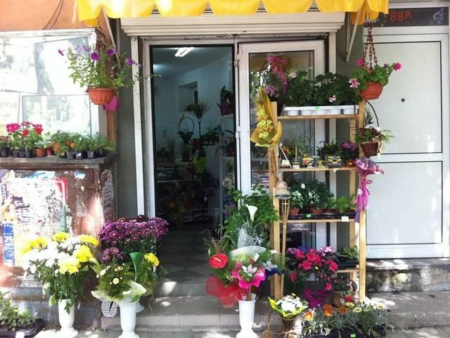 магазин за цветя Галерия #4