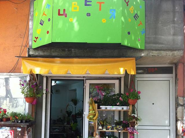 магазин за цветя Галерия #1