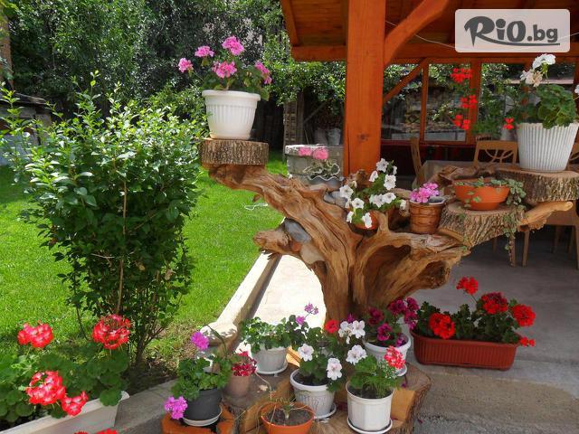 Къща за гости Виен Галерия снимка №3