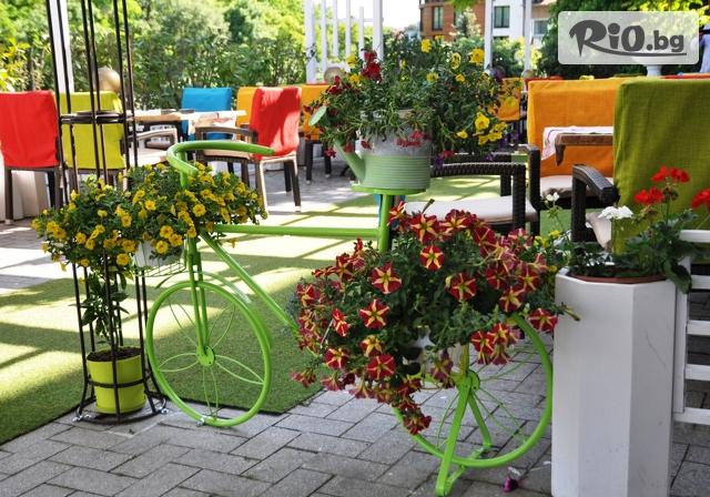 Ресторант Варна Галерия #2