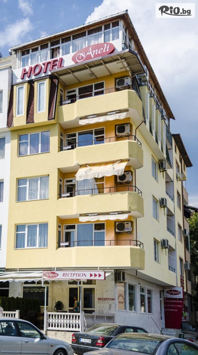 Семеен хотел Анели Галерия снимка №1