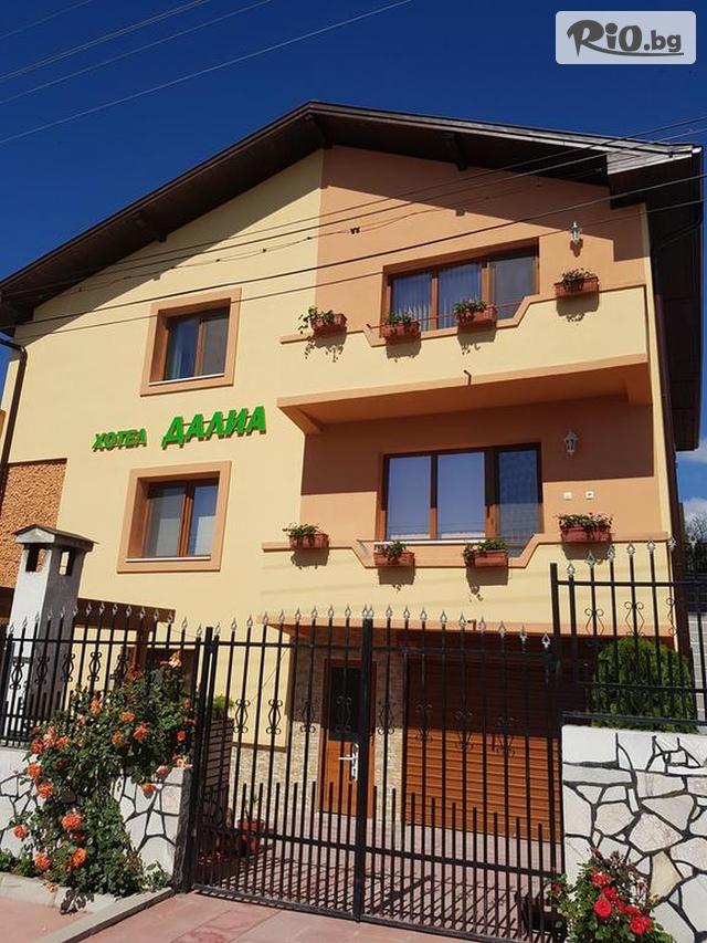 Семеен хотел Далиа Галерия #1
