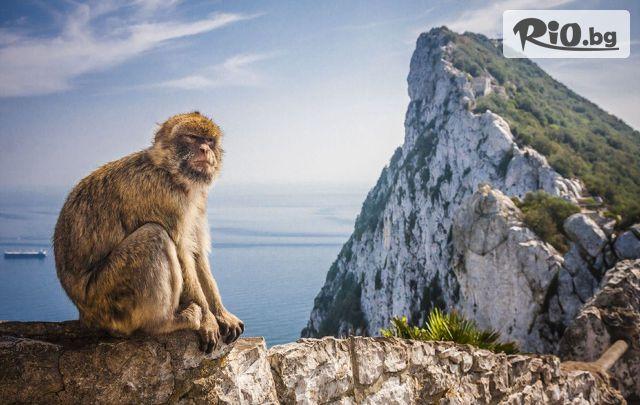 Туристическа агенция Солвекс Галерия #13