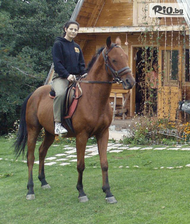 Къща и конна база Русалиите 3 Галерия #30