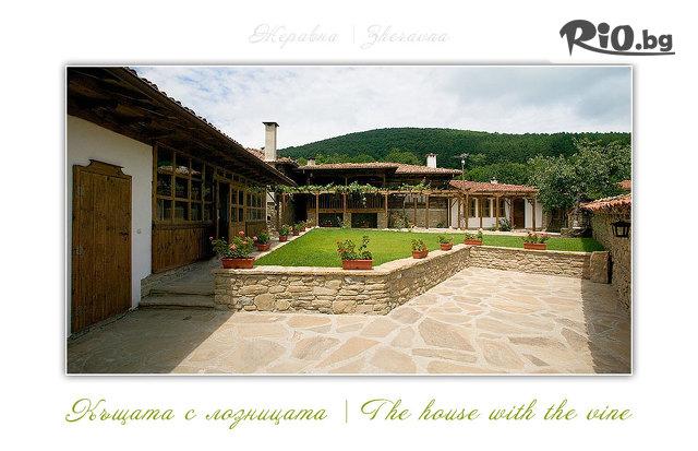 Къщата с Лозницата Галерия #2